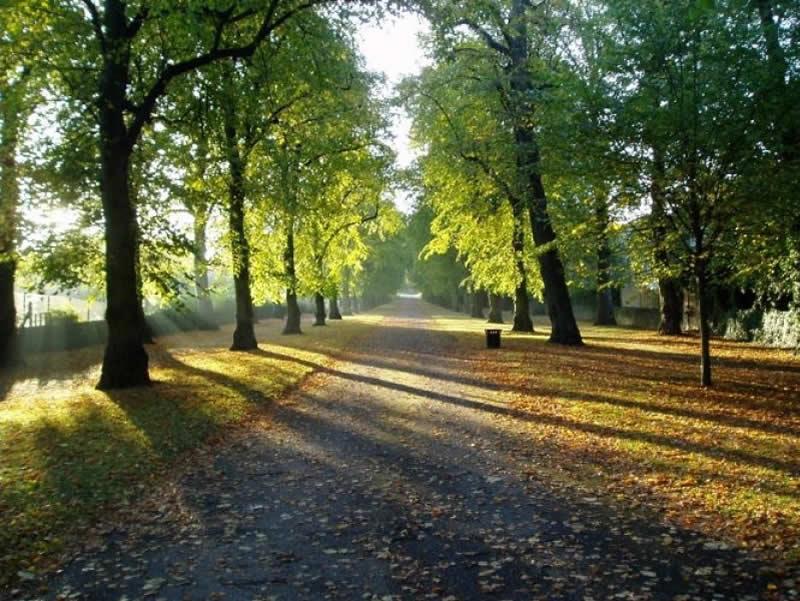 Norfolk Heritage Park