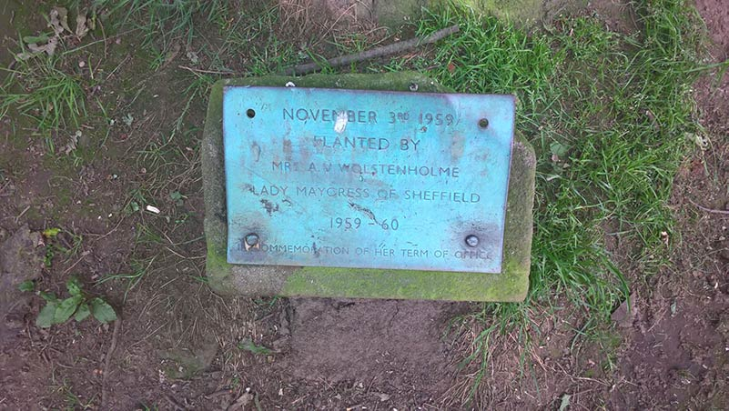 Bingham Park Lady Mayoress plaque