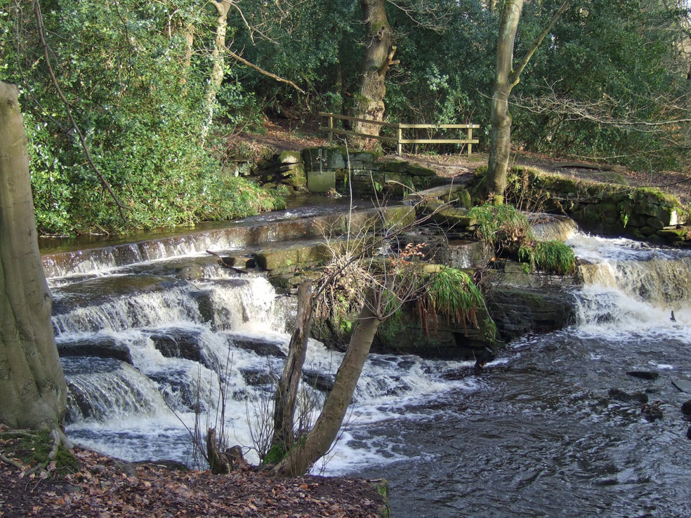 The Third Coppice weir is a natural waterfall raised by a single course of stone blocks stapled together. (RVCG, 2011)