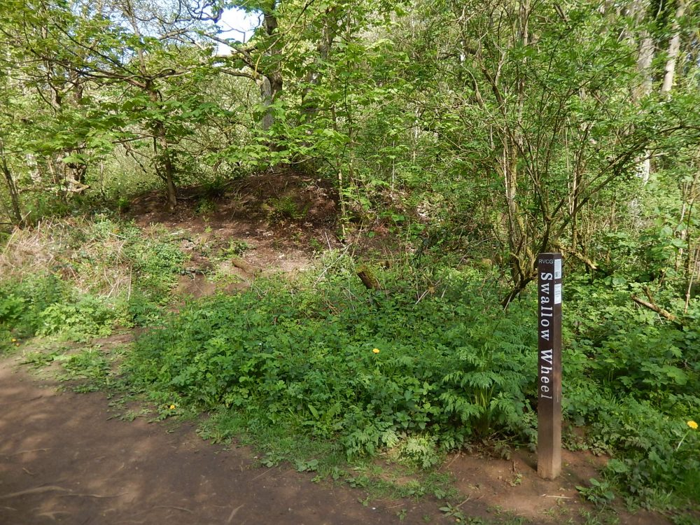 The Swallow Wheel marker post is located below the mill dam wall, where the grinding hull used to be.  (RVCG, 2016)