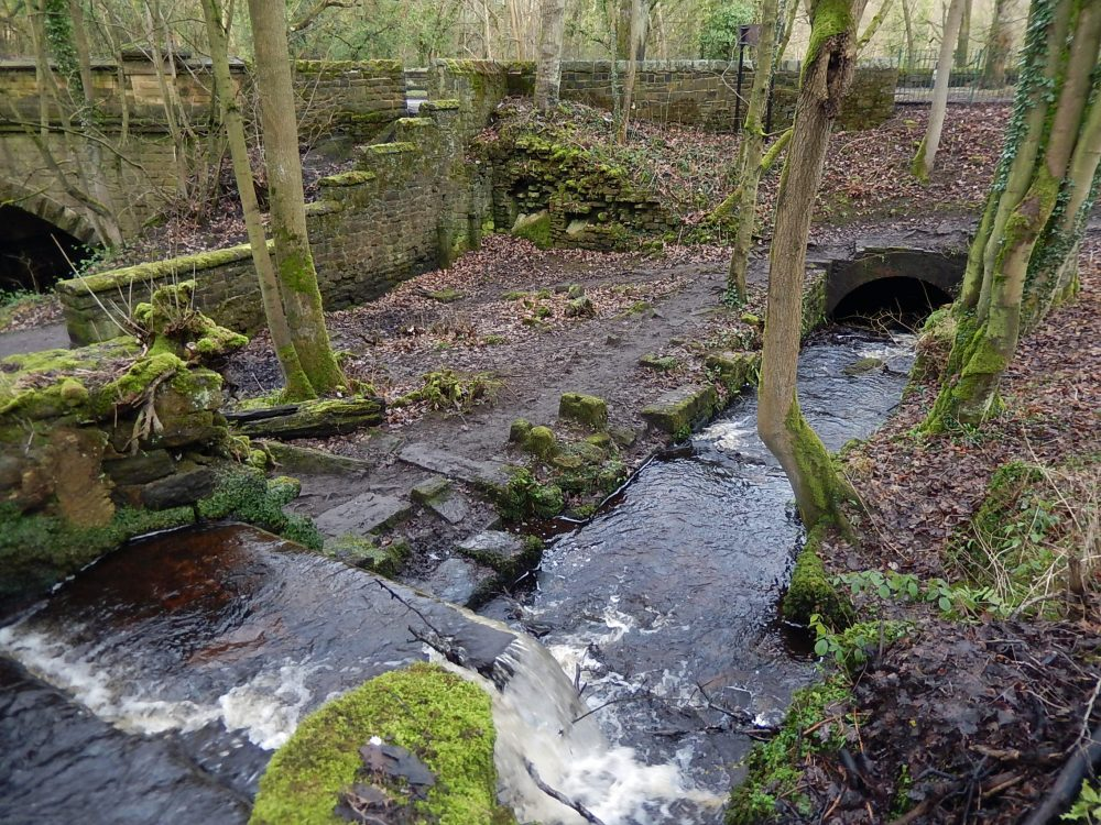 Upper Cut Wheel: the footings and walls of the former buildings can still be seen, now partly obscured under the path and steps up to Rivelin Valley Road. The tail goit disappears into a culvert underneath the road, to emerge into Nether Cut mill dam. (RVCG, 2016).
